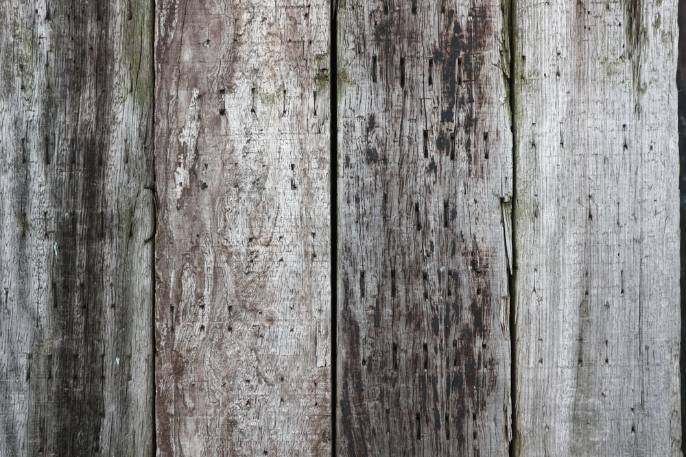 木材 | フリー素材 キューブ