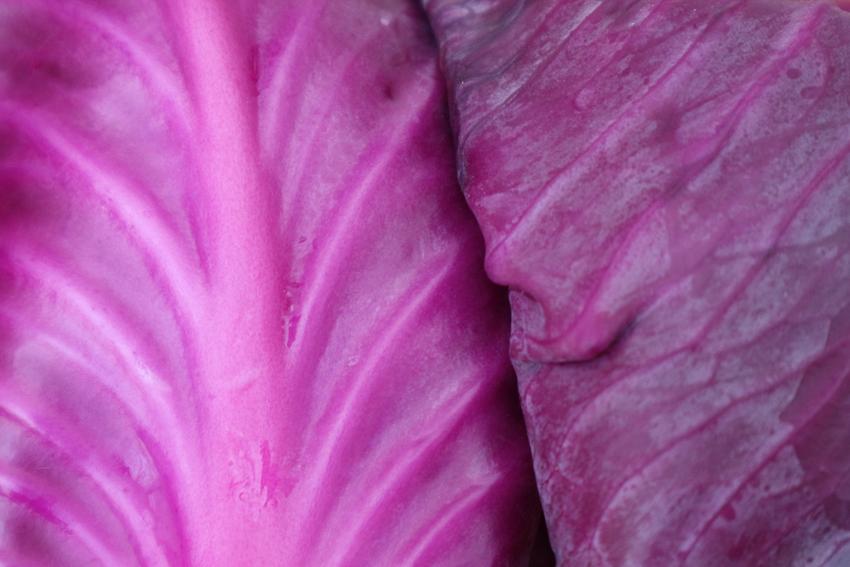 紫キャベツのテクスチャ